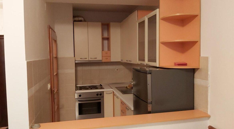 Наместен-стан-во-строг-центар (1)